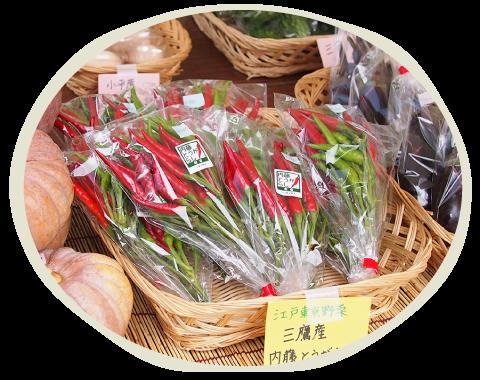東京のブランド野菜として注目を集め、2013年に江戸東京野菜に認定!