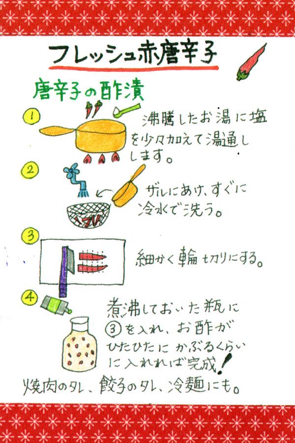 唐辛子の酢漬